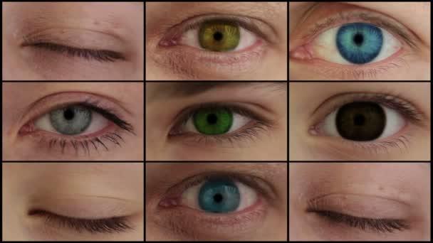 devět různých barevných oči.