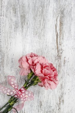 Pink carnation flower on white background. Blank space on wooden