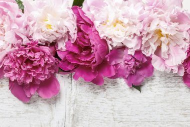 Stunning pink peonies on rustic wooden background. Copy space