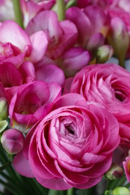 Bouquet of pink freesia flowers and pink persian buttercup flowe