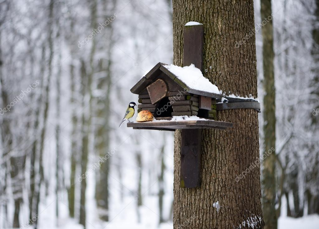 Nesting box under snow during the winter