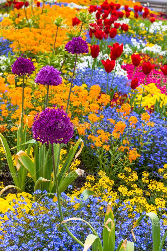 Красивые картинки вертикальные цветы