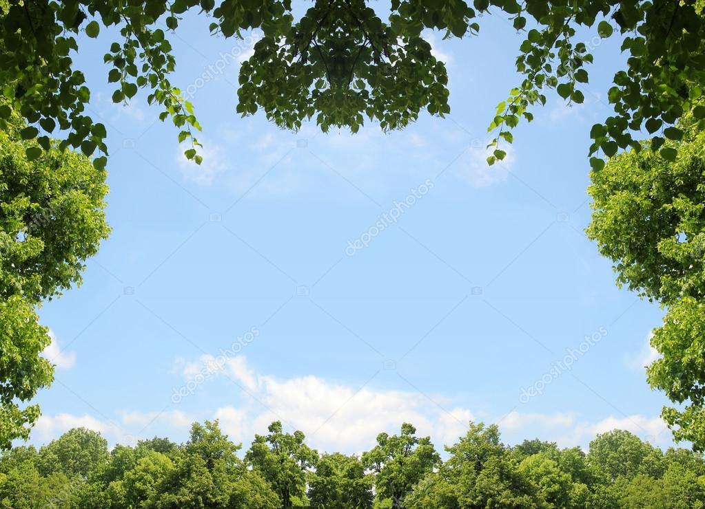 marco natural de verdes hojas y árboles, cielo azul con nubes ...