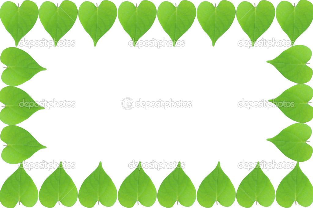 marco de hojas verdes con fondo blanco — Foto de stock ...