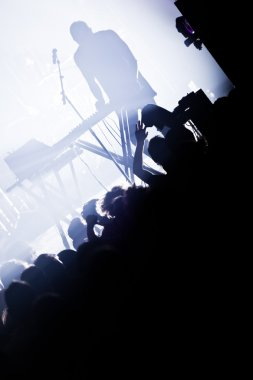 Electro concert and crowd