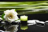 Fotografie kameny a bílá orchidej