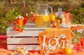 Zdobené piknik s pomeranče a limonády v létě