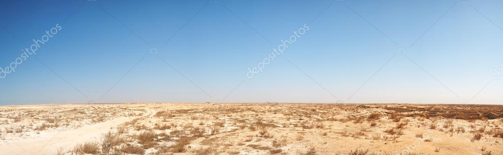 Panoramic image of middle eastern desert