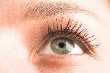 Close-up of an eye.