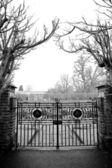 Gate a stromy