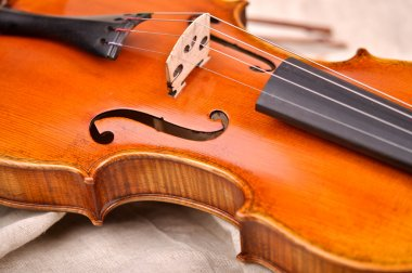 Fragment of violin isolated on beige background