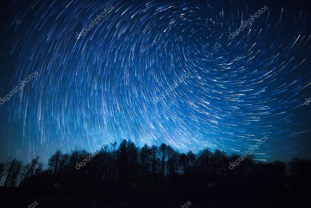 Night sky, spiral star trails and the forest