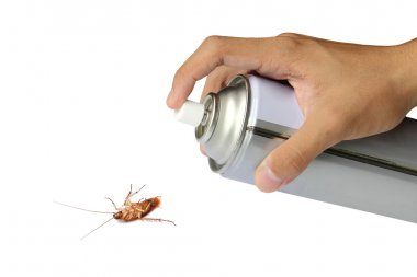Cockroach spray with spray cans over white background