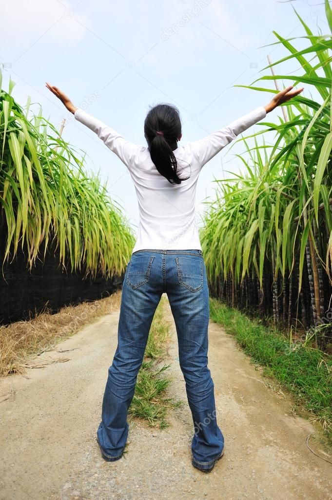 Woman open arms in sugarcane field