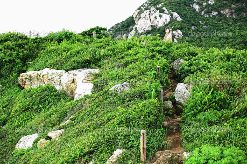 National forest park
