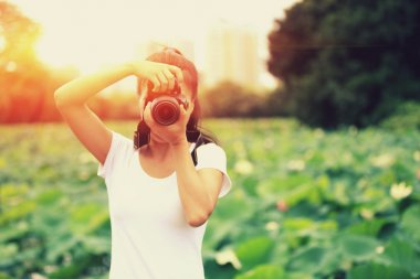 Photographer taking photo of blooming lotus