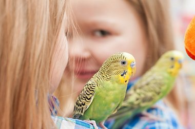 Child with wavy parrot on his shoulder