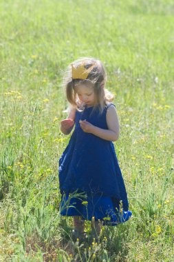 beautiful little girl in a dress and crown