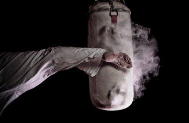 Karate round kick