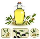 Fotografia bottiglia di olio con olive verdi e le etichette di olio doliva. vettore malato