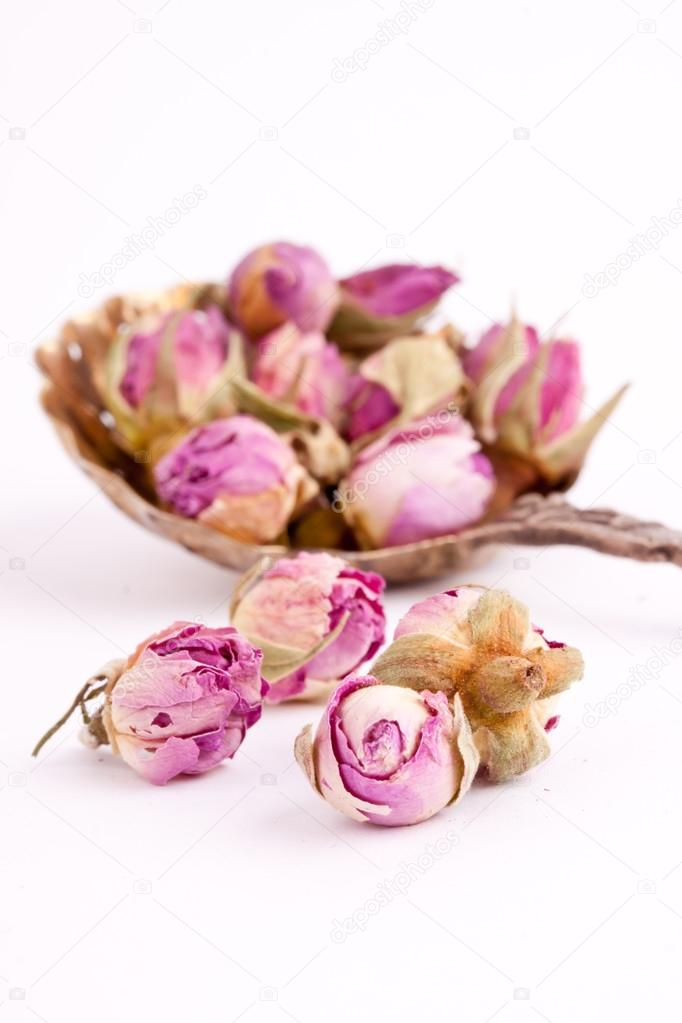 boutons de rose sechees