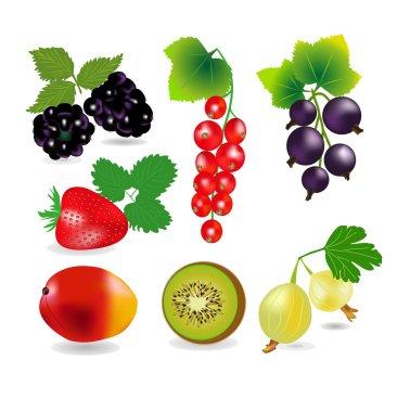 Juicy ripe berries