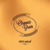 Photo Grain organic vintage design background