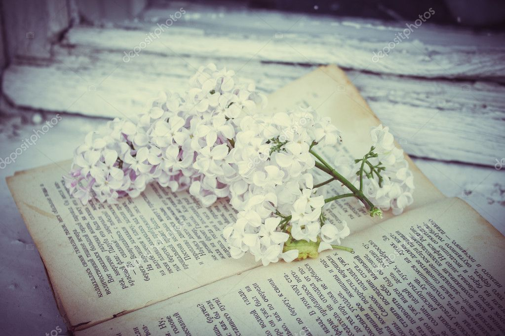 the lilac lies on the old vintage book