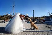 Fényképek Menyasszony csók egy kutya