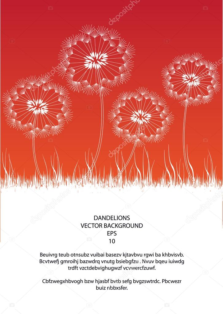 Romantic vector illustration in vintage style with dandelion flowers