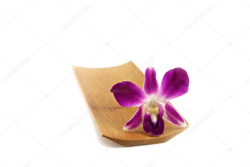 Lila Orchidee In Bambus Schale Stockfoto C Meepoohyaphoto 27650705