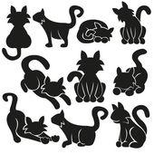 Fotografia gatti carino vector set