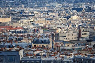 Parisian rooftops