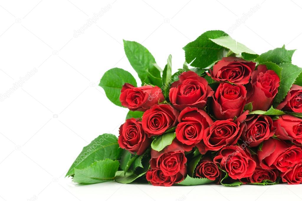 beautiful flower bouquet - HD2560×1700