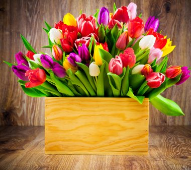 Tulips in the box on wooden background stock vector