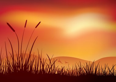 Marshland sunset.