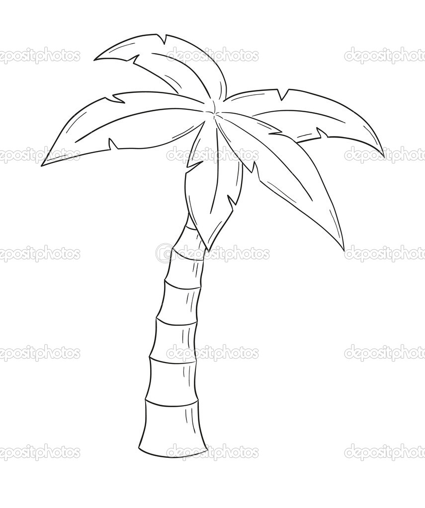 Depositphotos Stock Illustration Sketch Of The Palm Tree Photo Pencil Drawings
