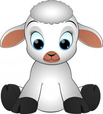 Lamb on a white background