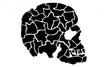 Black and White Vector Side View of a Cracked Skull