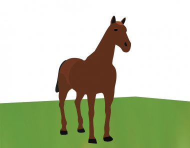 horse portrait standing against white background on grass