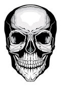 Fotografia cranio umano