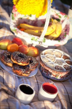 Tea time picnic, cookies and donuts with cup with hot aroma tea or coffee at teatime outdoors