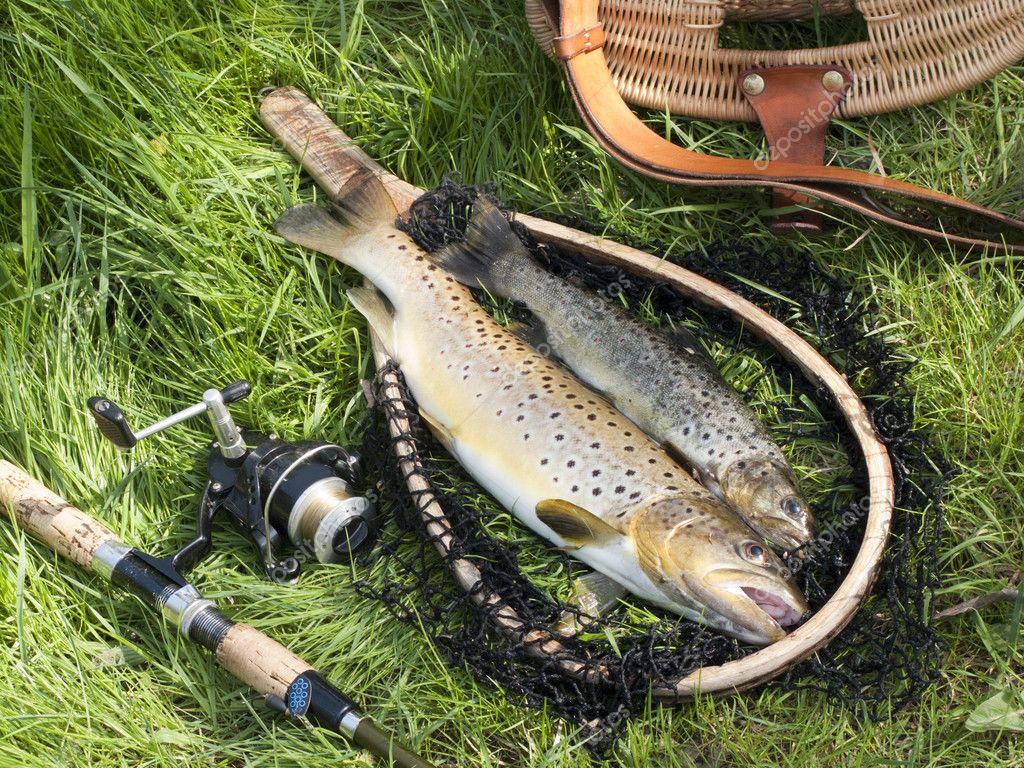 платная рыбалка в тамбовской об