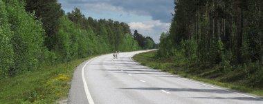 Raindeers crossing road, Sweden near Norway border at district