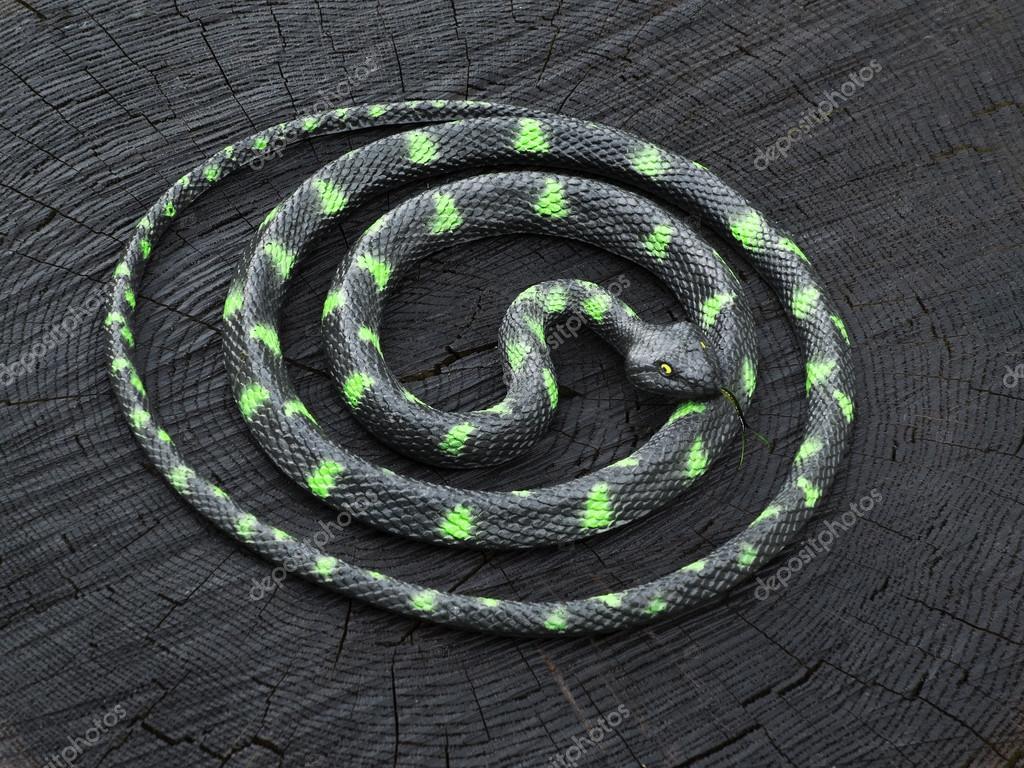 Schwarze und grüne Schlange zusammengerollt auf den schwarzen Stumpf ...