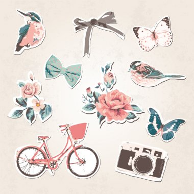 Vintage things set-birds,bows,flow ers,bike,camera,but terflies on grunge background clip art vector