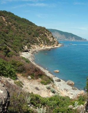 Rocky sea beach
