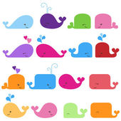 Rainbow Vector Set of Cute Whales