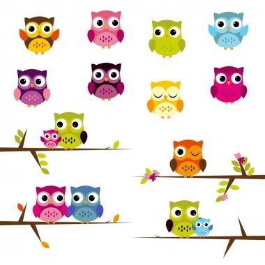 Cute Vector Set of Owls