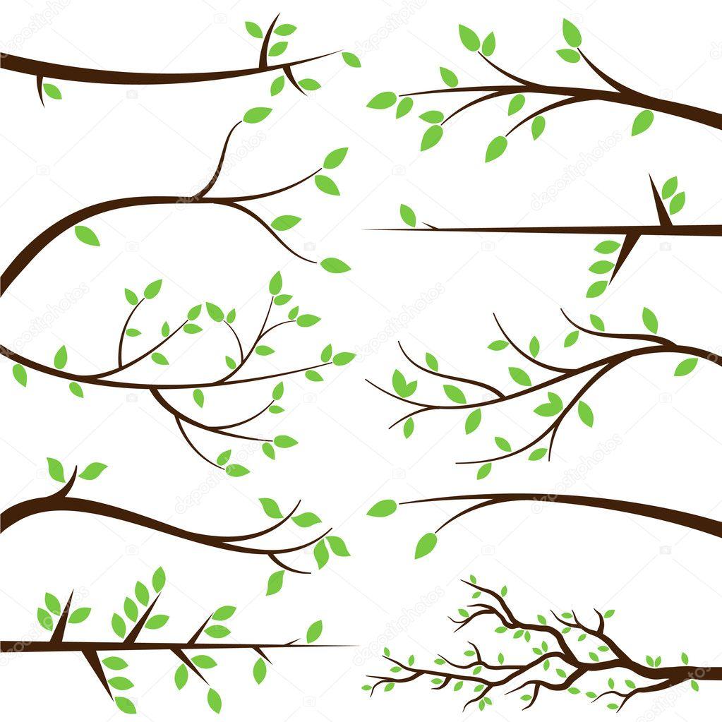 vector collection of tree branch silhouettes stock vector rh depositphotos com branch vector images branch vector images